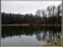 nordic walking: Grabówki - szukamy wiosny...